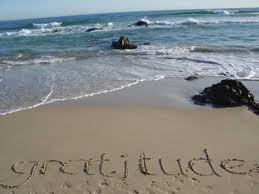 Gratitude Ocean